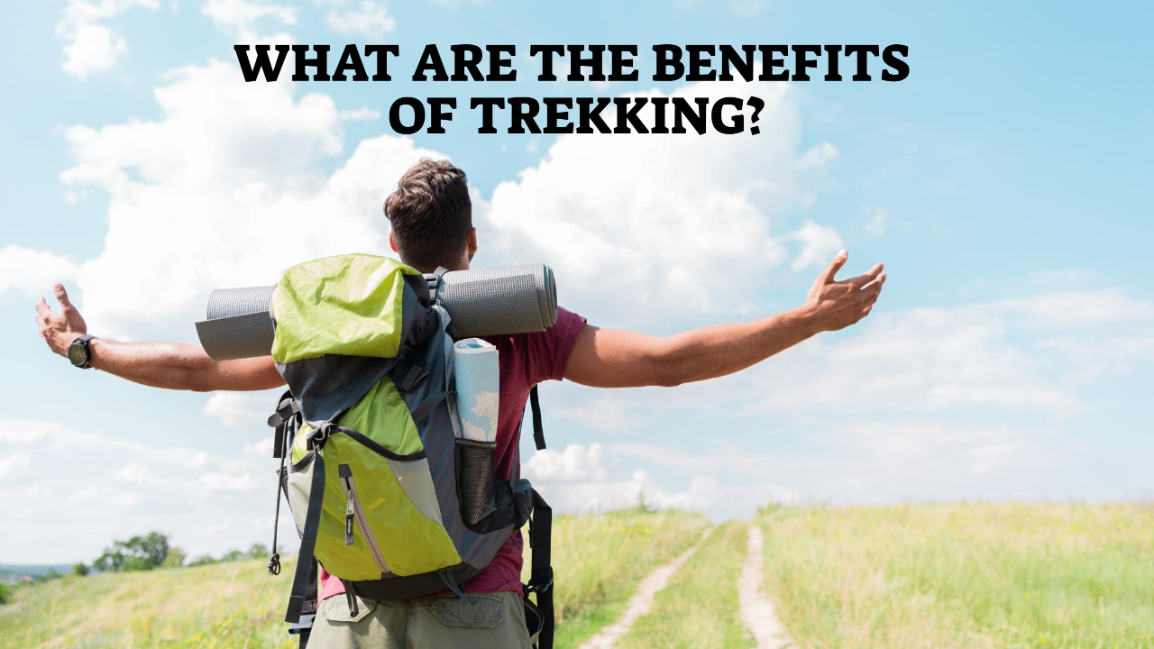 What Are The Benefits Of Trekking