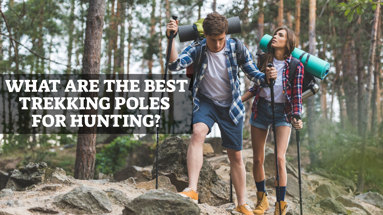 What Are The Best Trekking Poles For Hunting