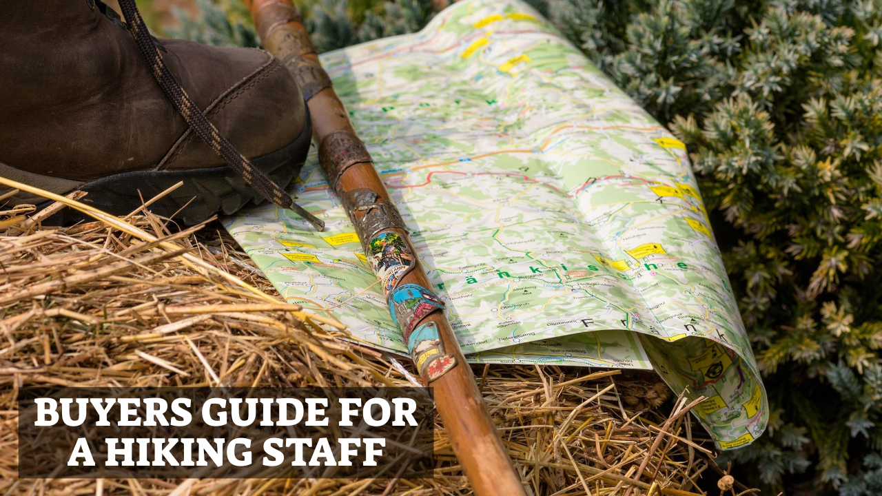 Buyers Guide For A Hiking Staff